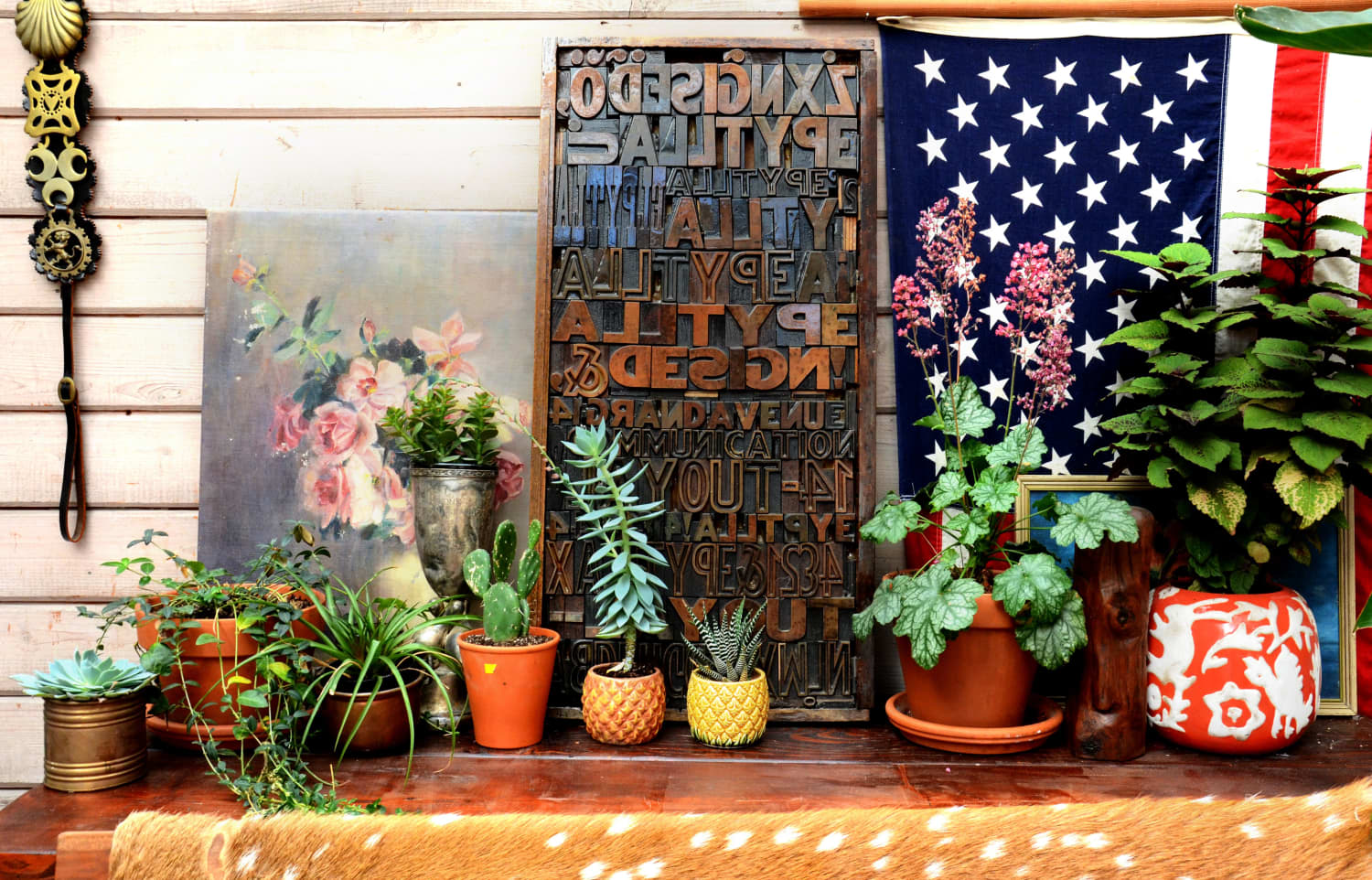 How to Bring Your Houseplants Outside for the Summer