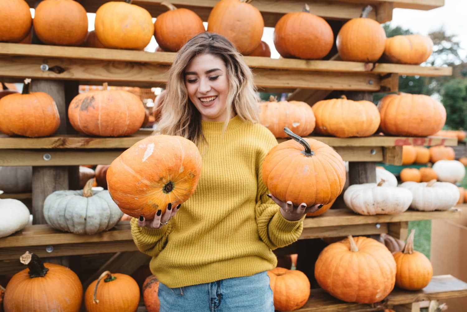 36 Cheap or Free Things You Can Do This Fall