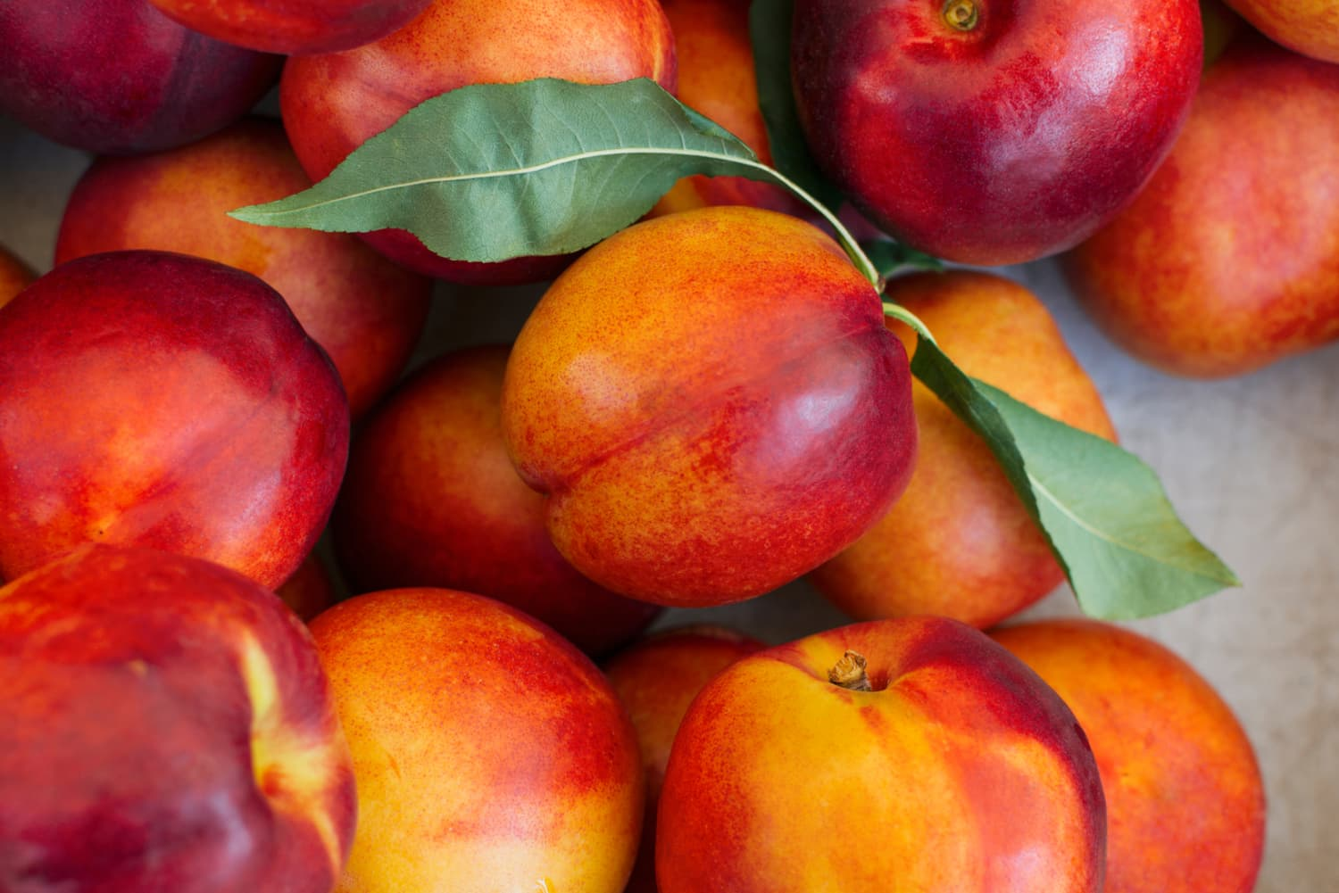 Nectarines Are So Much Better Than Peaches (Sorry)