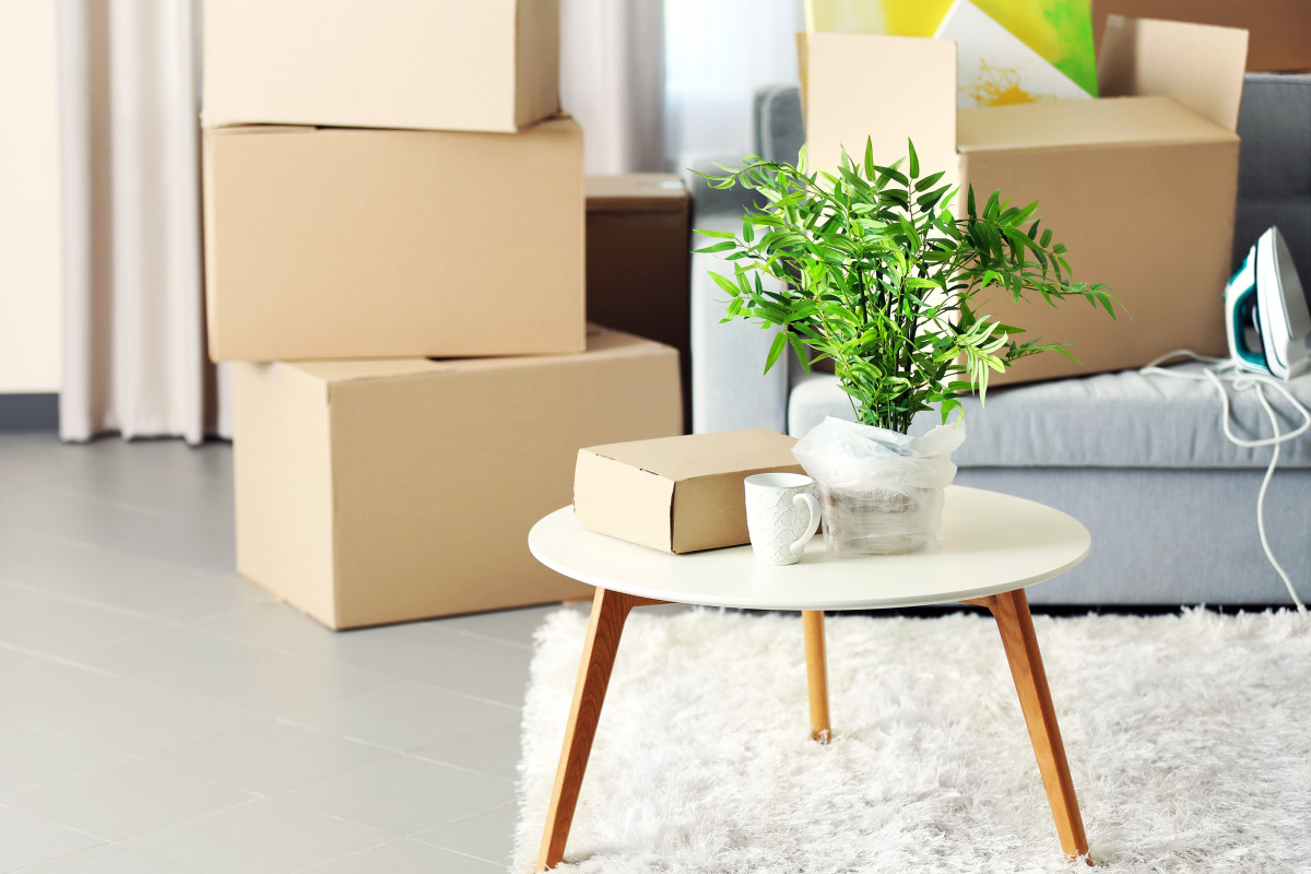 5 Renters' Insurance Companies to Finally Get a Quote From