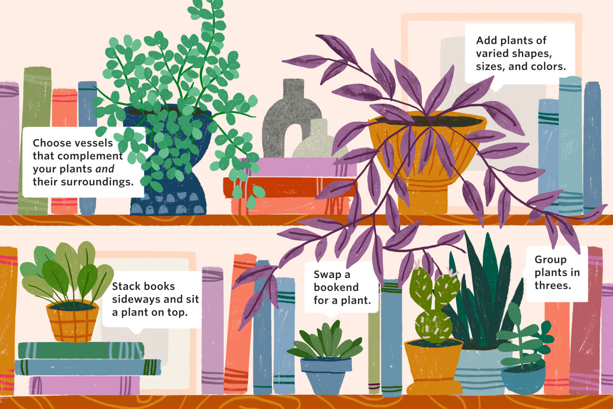 The Plant Lover's Guide to Styling a Bookshelf
