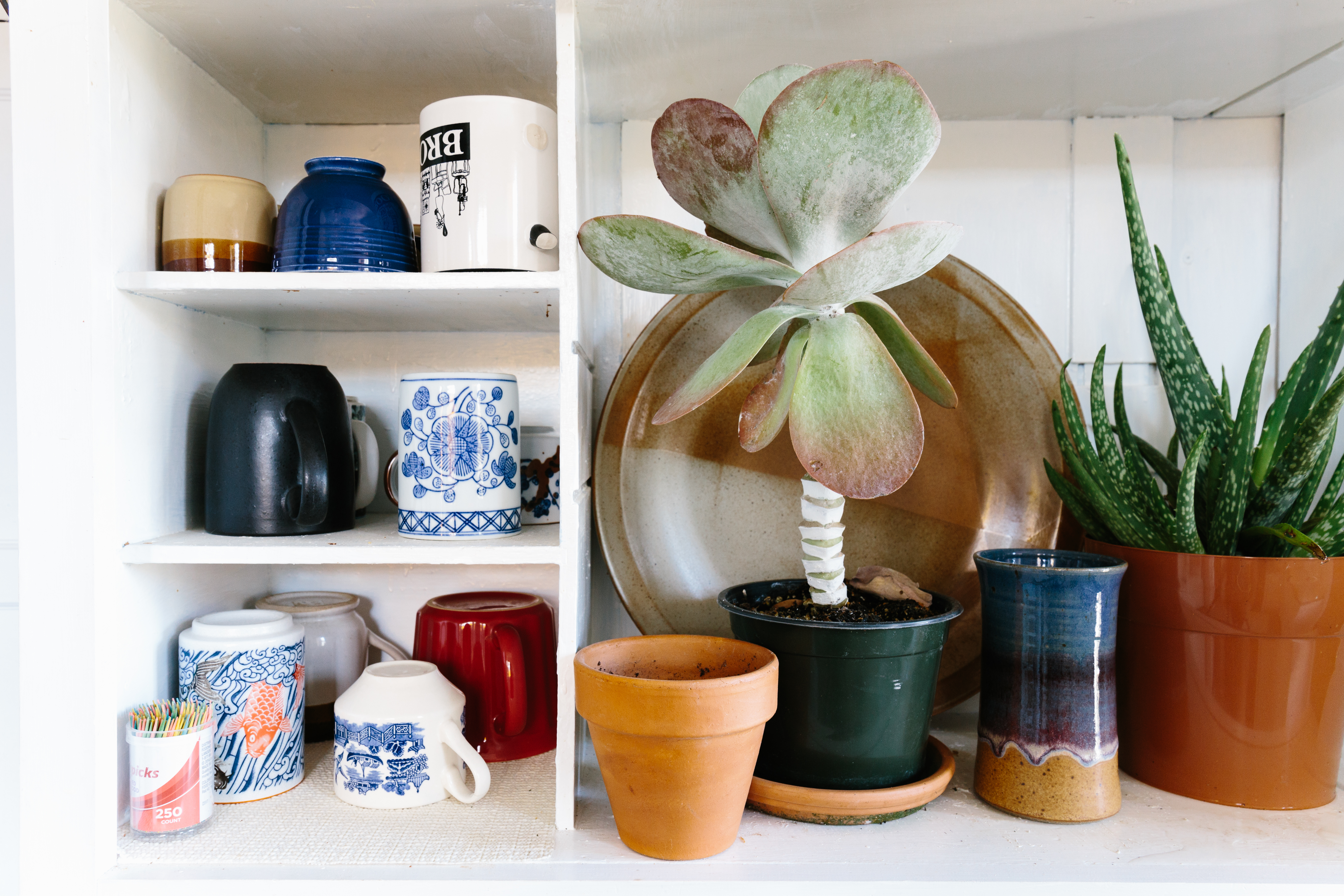 7 Planters from Amazon That Are Perfect for Your Growing Leaf Family — And Your Kitchen