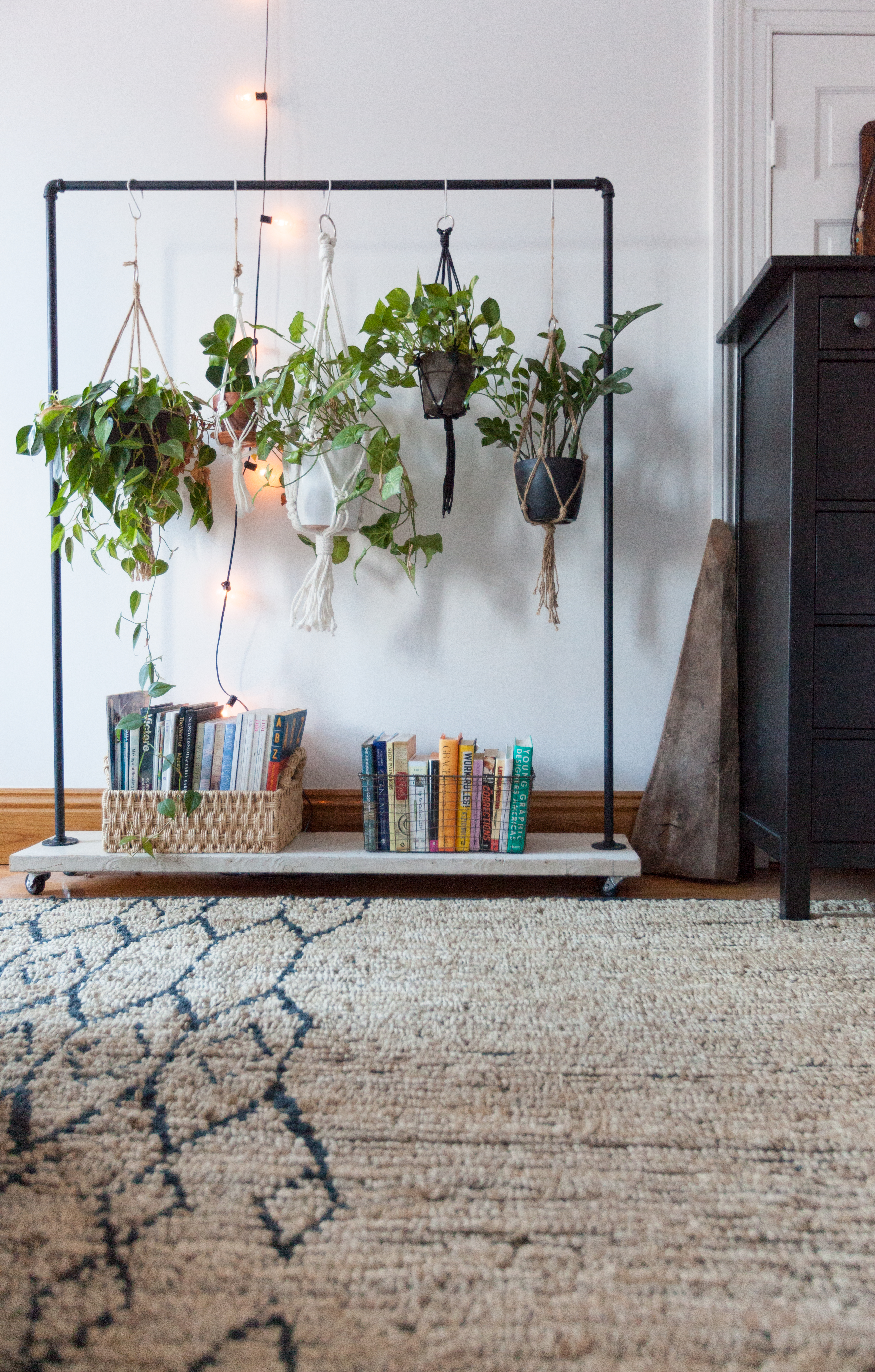 How To Display Houseplants 65 Of Our Favorite Plant Display Ideas Apartment Therapy
