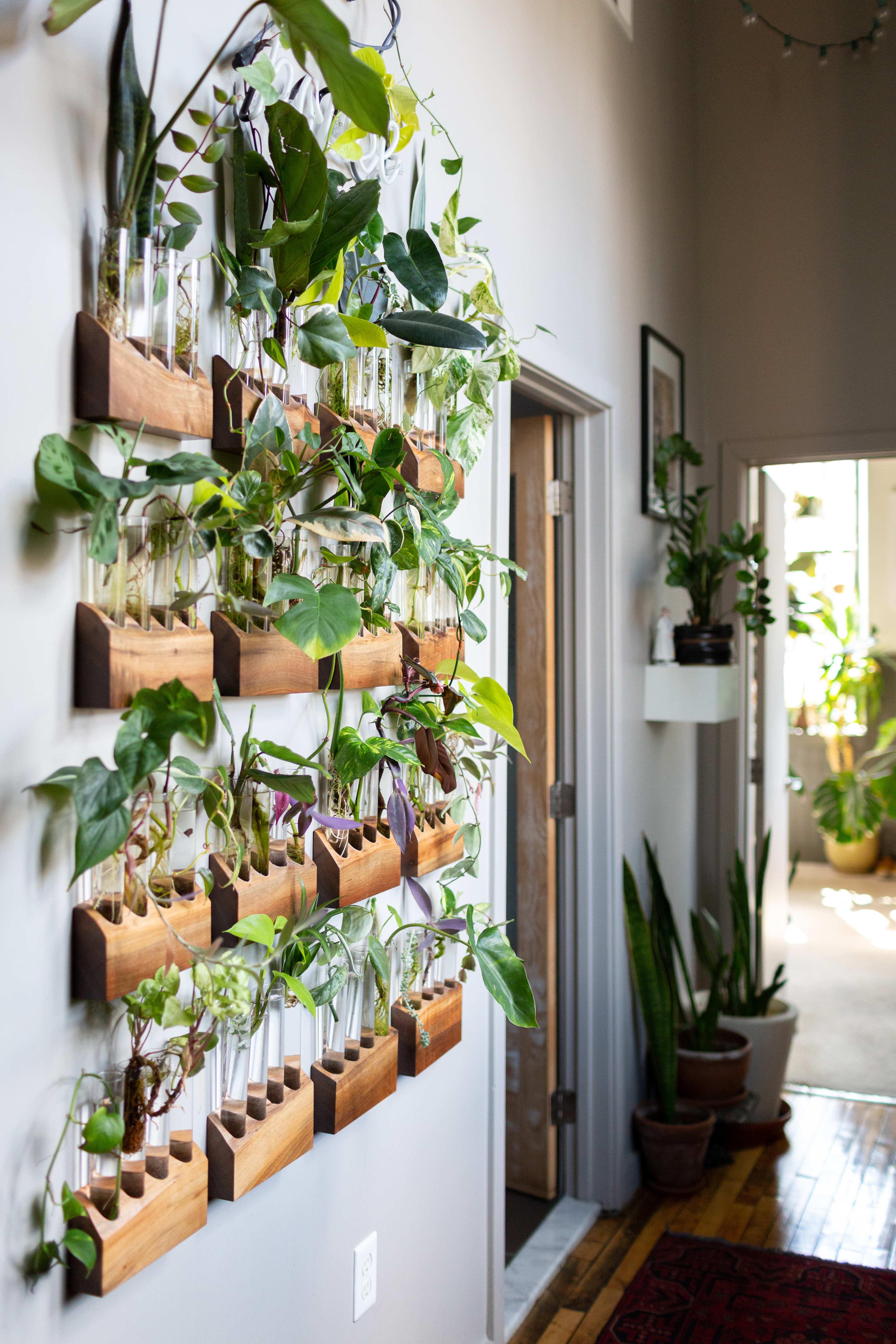 10 New And Brilliant Ways To Decorate With Plants Apartment Therapy