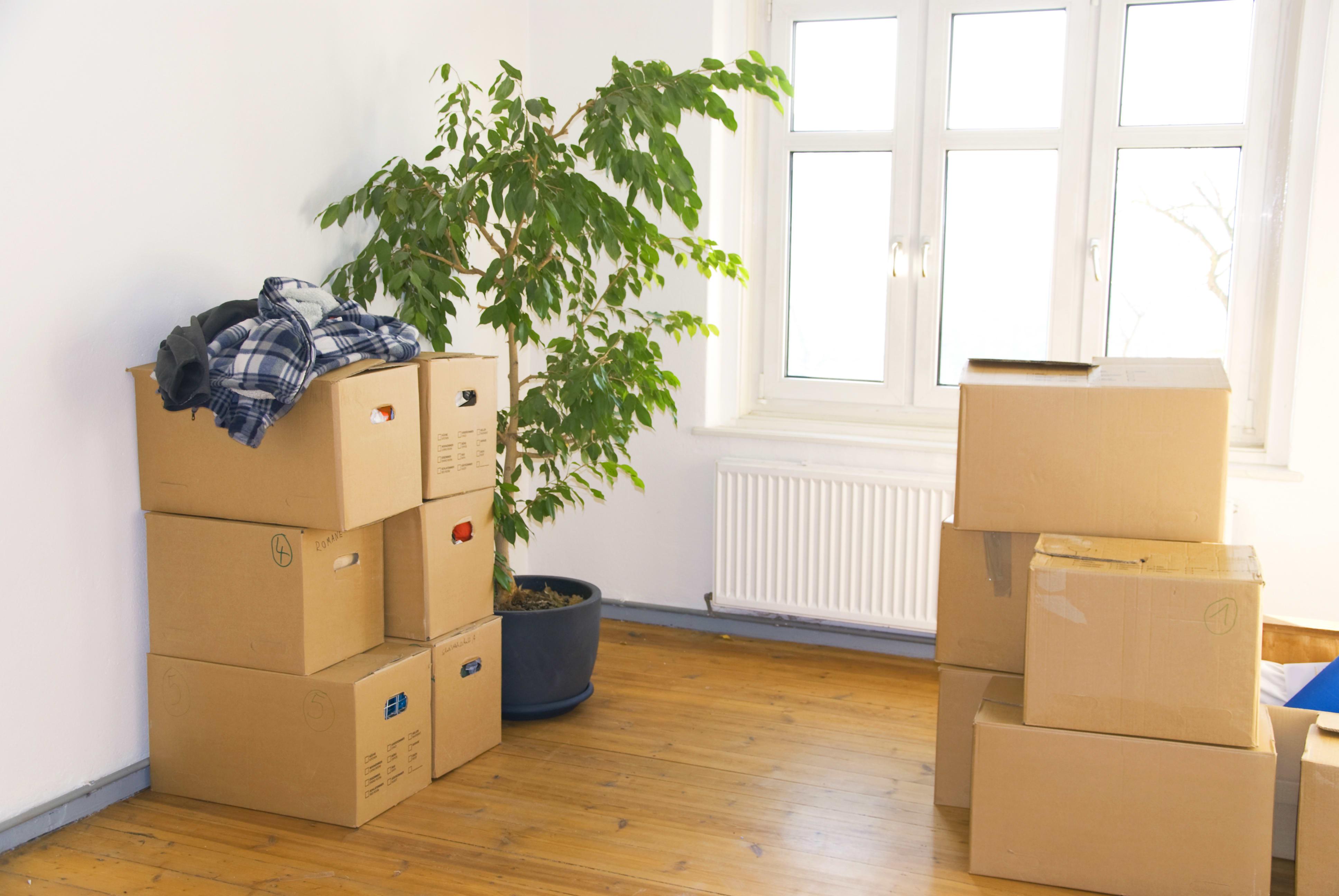 Переезд в новую квартиру прикольные картинки