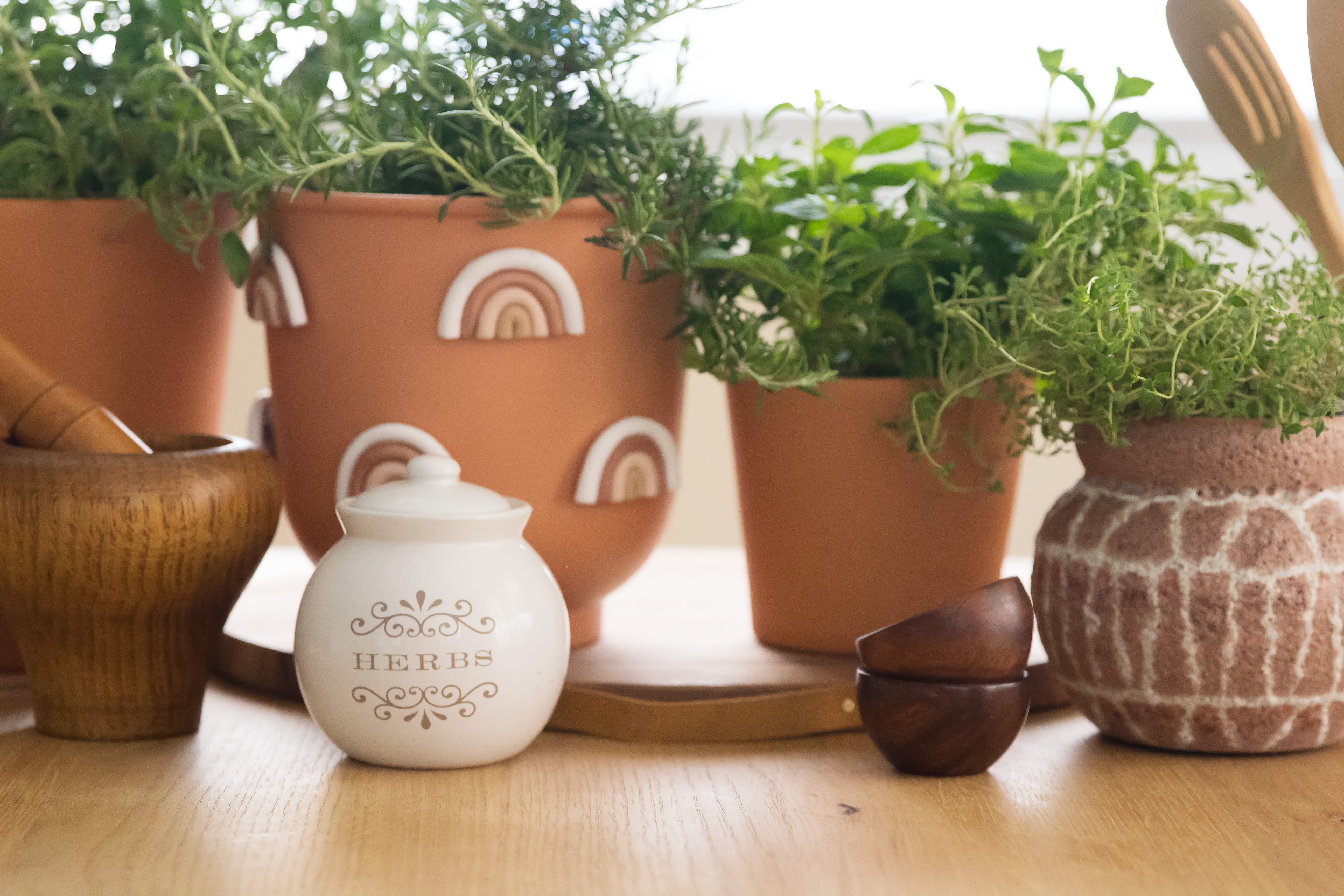How To Grow Herbs Indoors Apartment Therapy