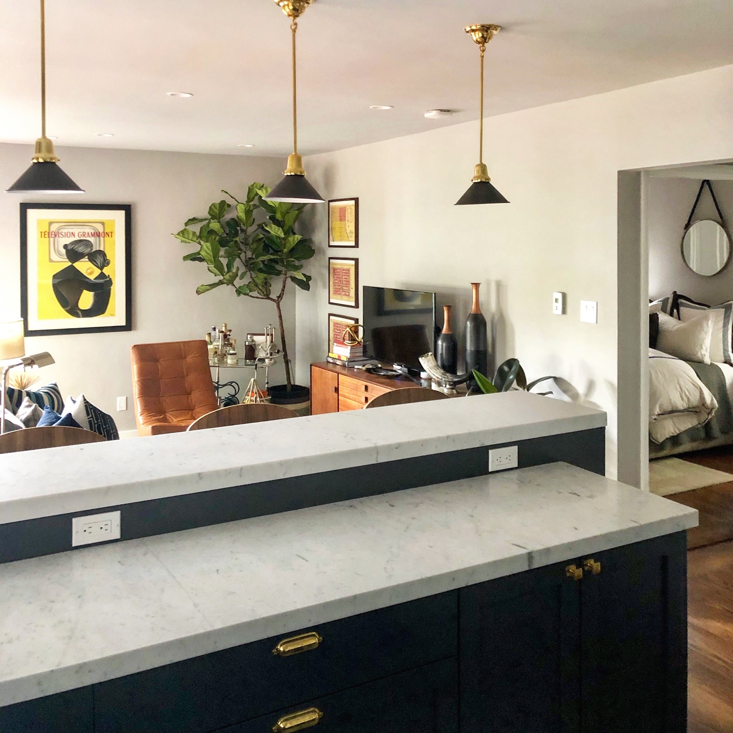 """A Small San Francisco Condo's Style Is """"Gentleman Chic Meets Cozy Traditional"""""""