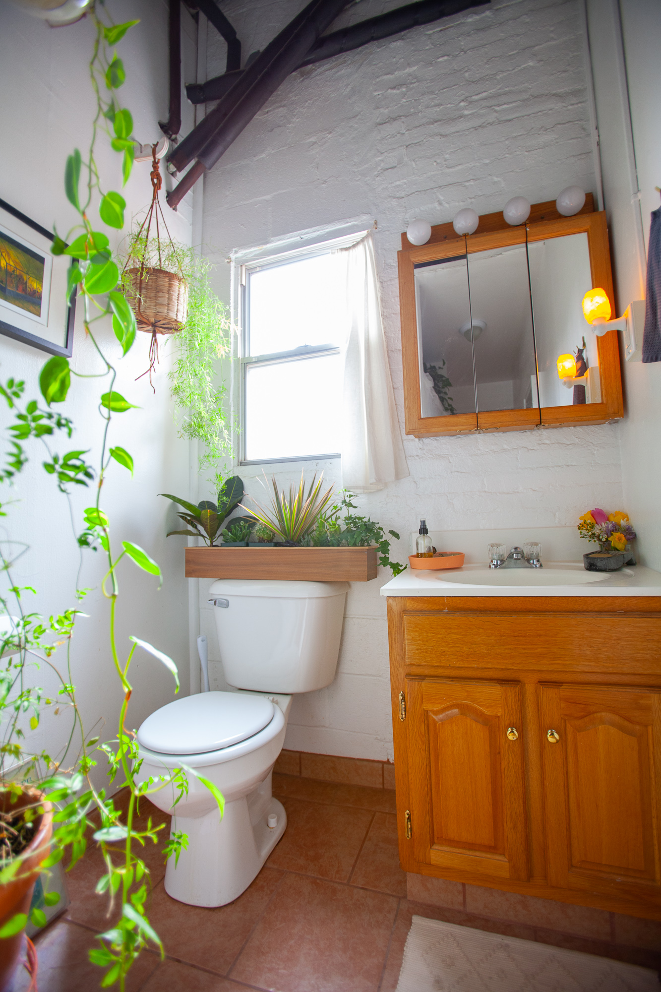 Plant-Filled Loft Decor Ideas and Photos  Apartment Therapy