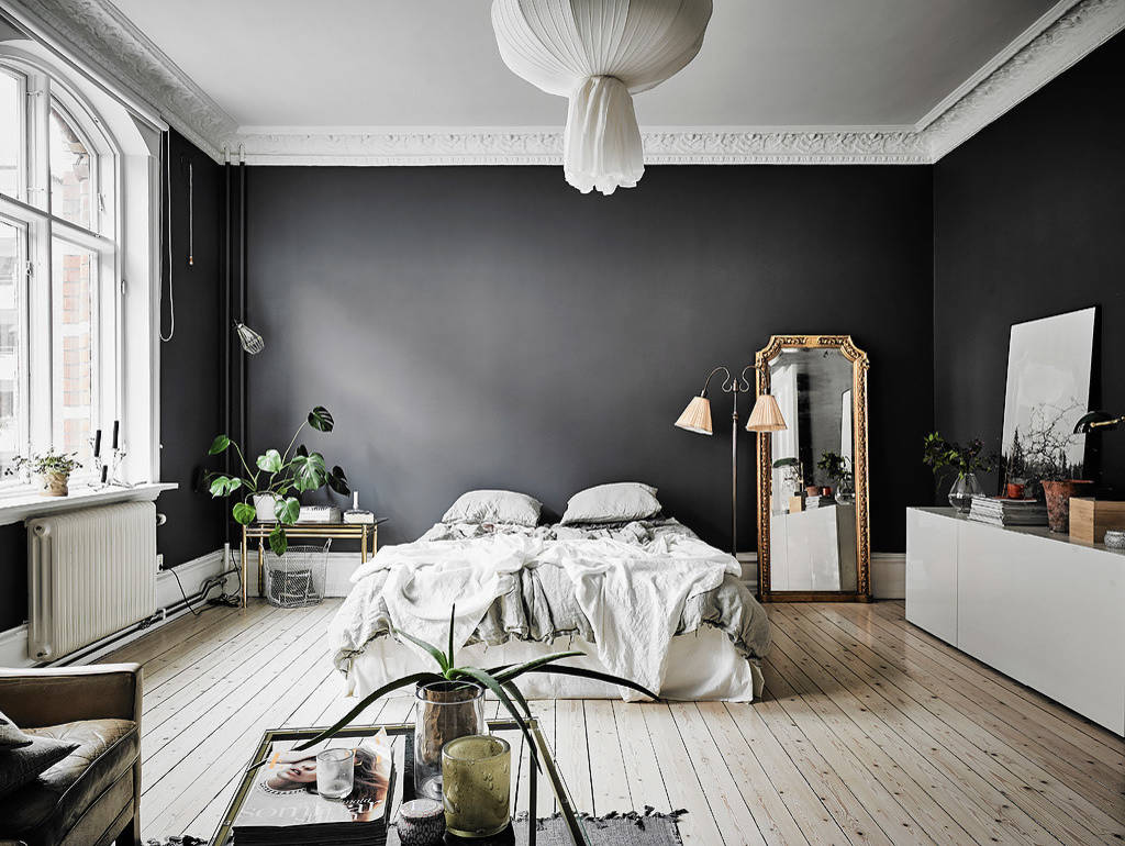 High Contrast Rooms With Dark Walls Light Floors Apartment