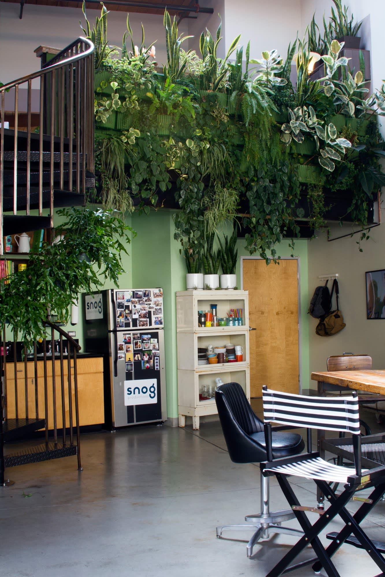 Vertical Garden Ideas How To Create An Indoor Or Outdoor Vertical Garden Apartment Therapy
