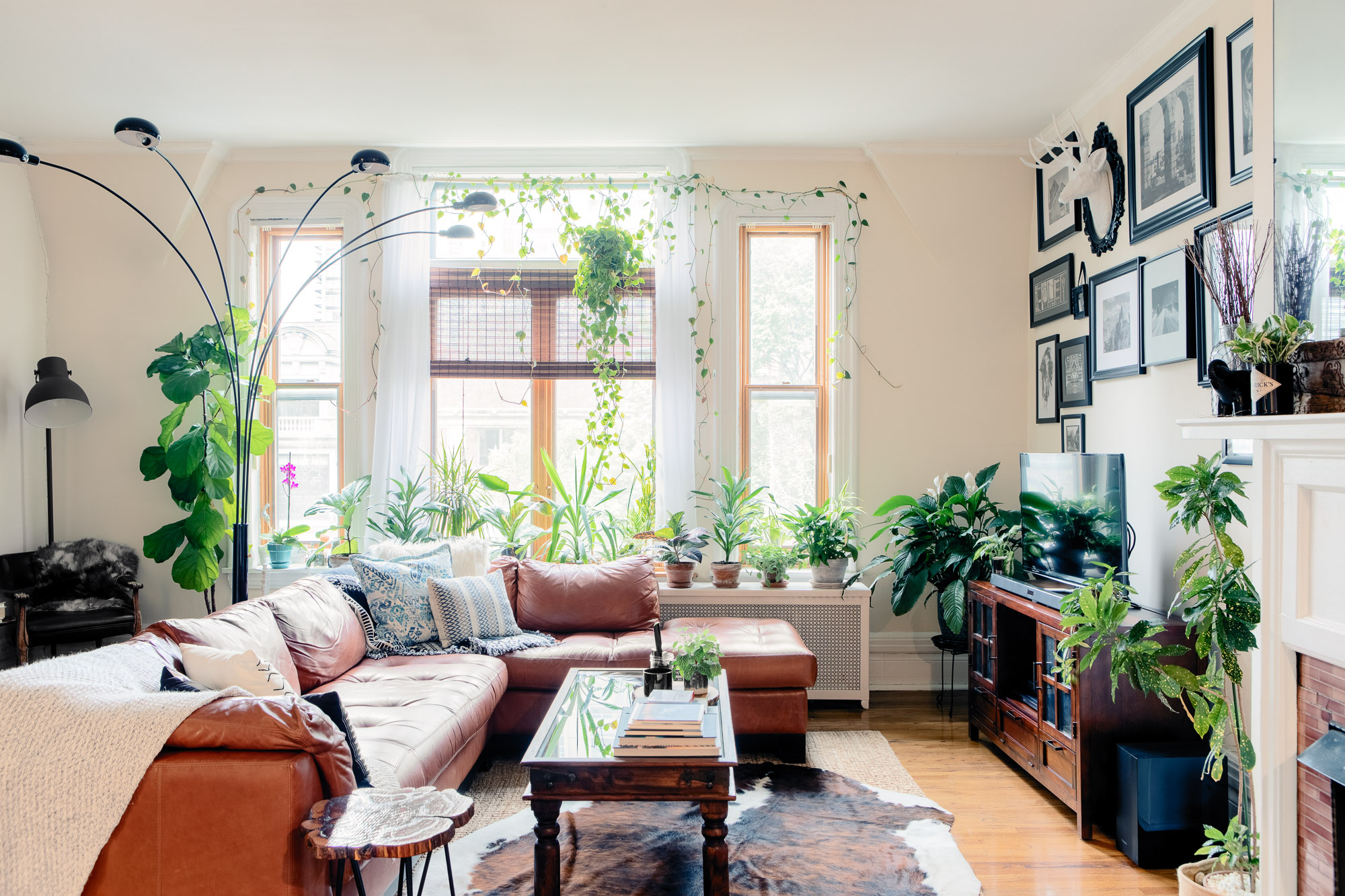 A Plant Filled Apartment In A Former Mansion Apartment Therapy