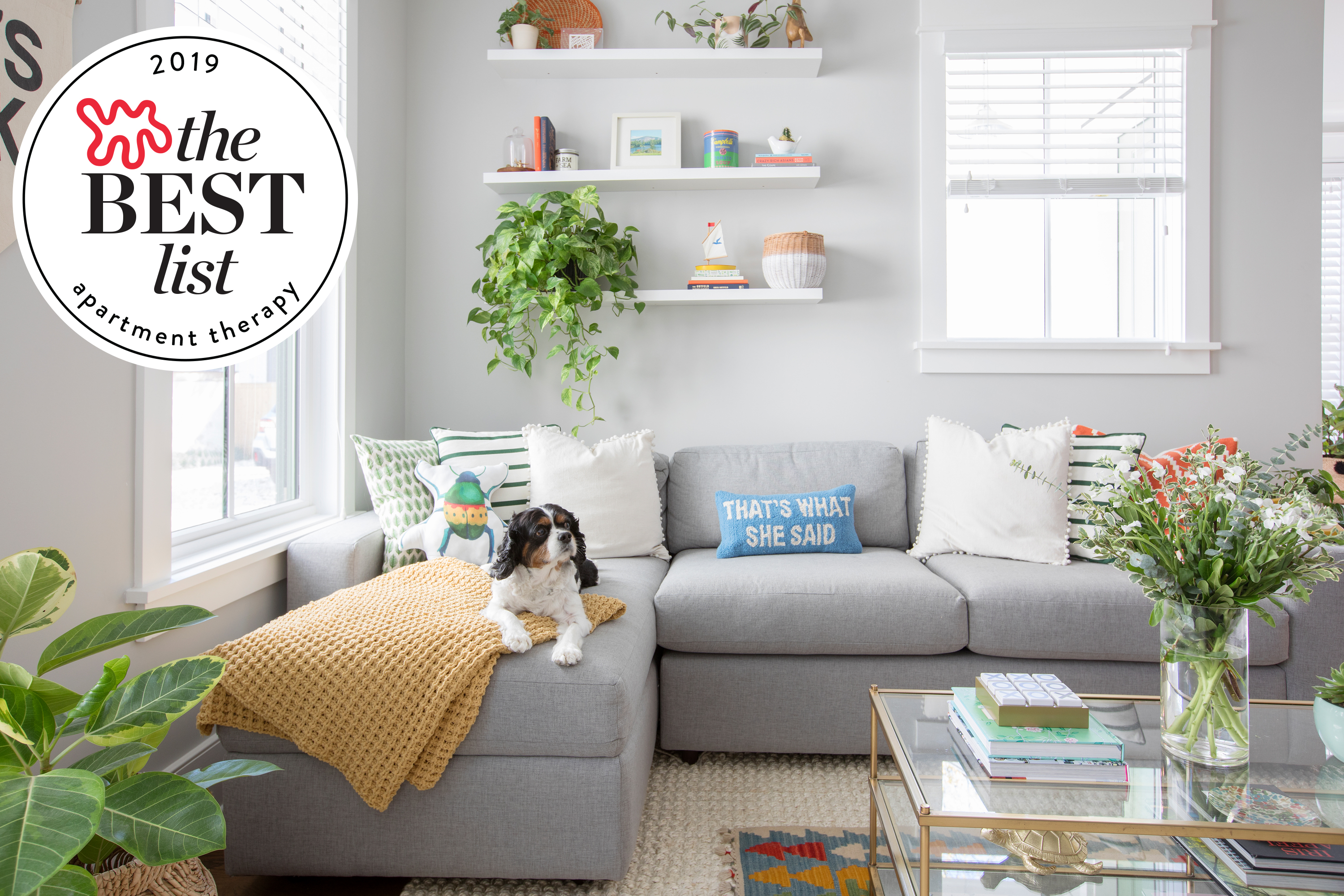 The Best Kid and Pet Friendly Sofas - Sectionals, Leather ...