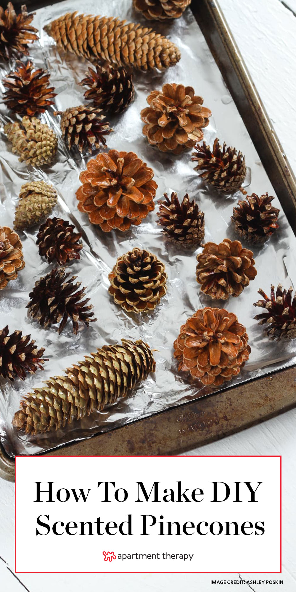 How To Make Diy Scented Pinecones Apartment Therapy
