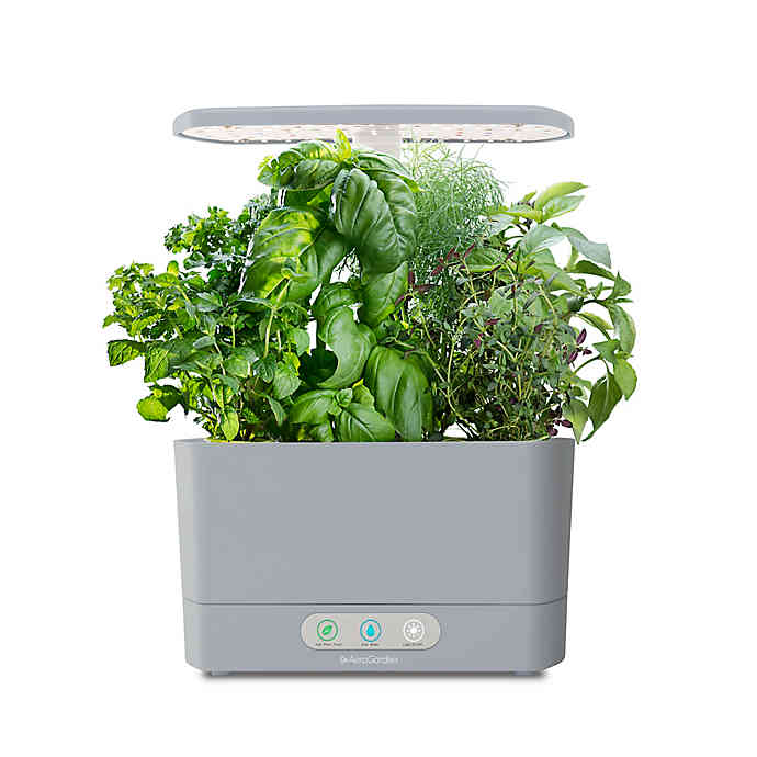10 Best Indoor Herb Growing Kits 2020 Apartment Therapy
