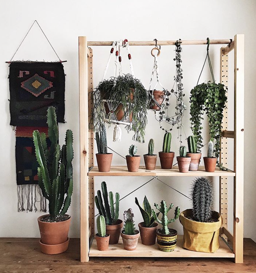 This Shelf Might Be Ikea S Most Functional Piece Yet Apartment Therapy
