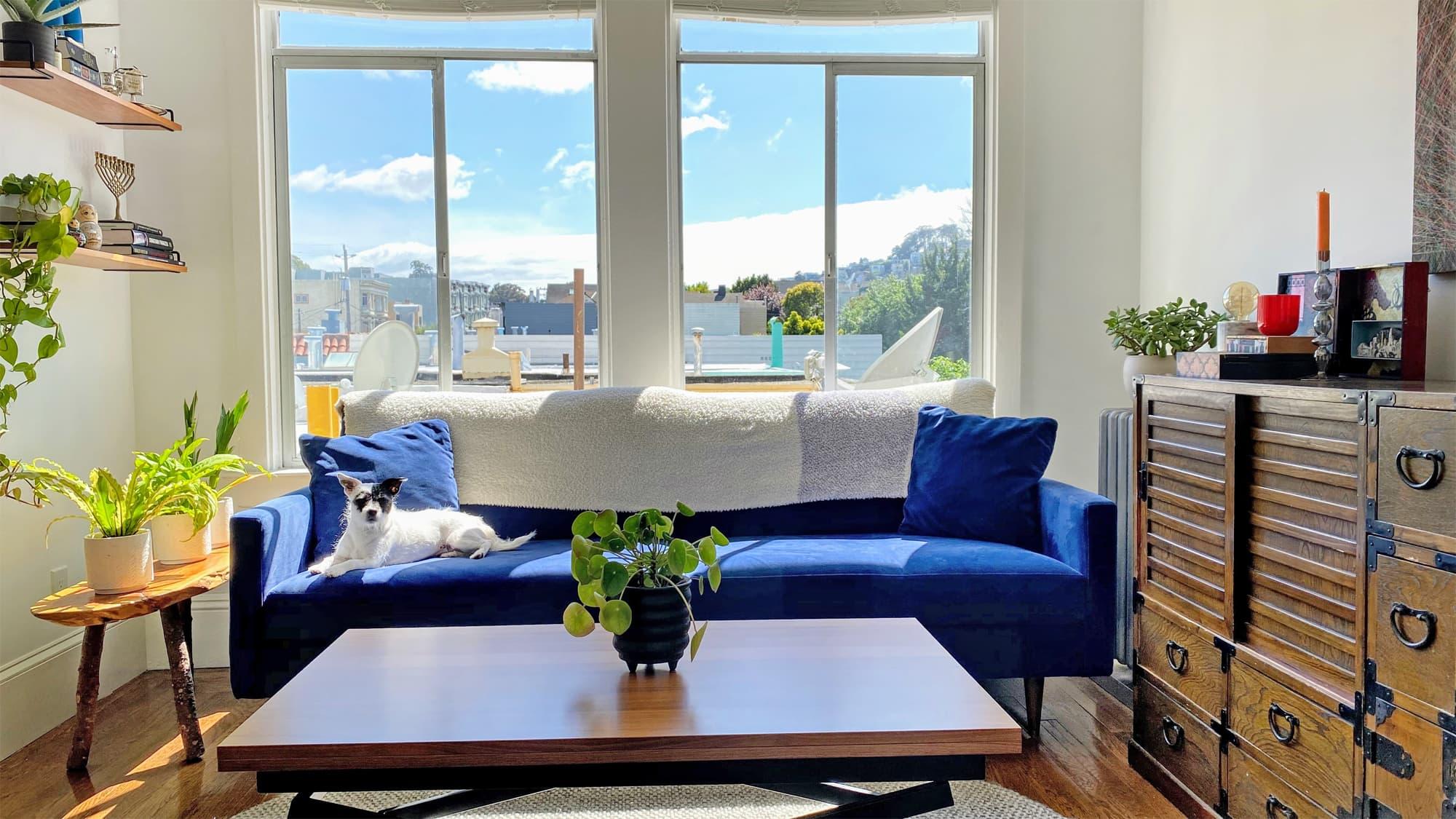 San Francisco Apartment Therapy