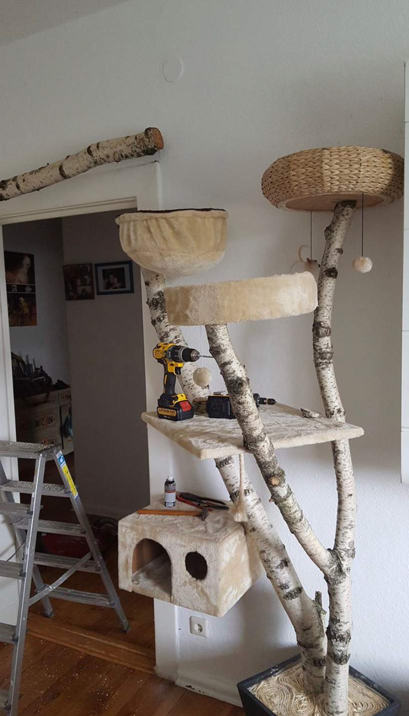 10 Diy Cat Trees And Cat Furniture Apartment Therapy